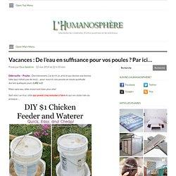 Vacances : De l'eau en suffisance pour vos poules ? Par ici…