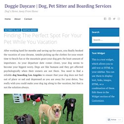 Dog, Pet Sitter and Boarding Services in Los Angeles - BSB