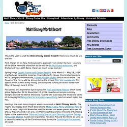 Walt Disney World Resort Vacation Planning Information