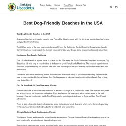 Best Dog-Friendly Beaches in the USA