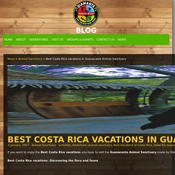 Best Costa Rica vacations in Guanacaste Animal Sanctuary - Diamante News