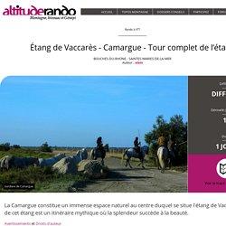 Étang de Vaccarès - Camargue - Tour complet de l'étang