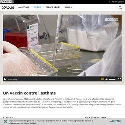 Un vaccin contre l'asthme - Corpus - réseau Canopé