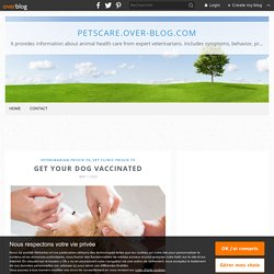 Get your Dog Vaccinated
