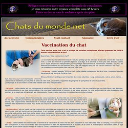 Vaccination du chat