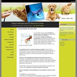 La vaccination de votre chat - Fiches conseils > Chat