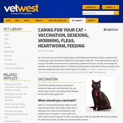 Caring for your cat - vaccination, desexing, worming, fleas, heartworm, feeding | Vetwest Animal Hospitals