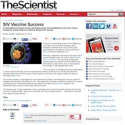 SIV Vaccine Success