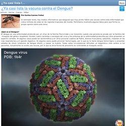 ¿Ya casi lista la vacuna contra el Dengue?