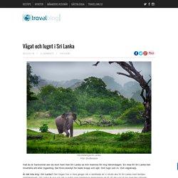 Vågat och lugnt i Sri Lanka - TravelBlogTravelBlog