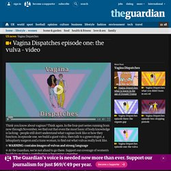 Vagina Dispatches episode one: the vulva – video