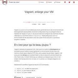 Vagrant, enlarge your VM