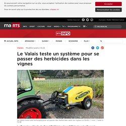 Le Valais teste un système pour se passer des herbicides dans les vignes - rts.ch - Valais
