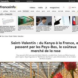 Saint-Valentin : du Kenya à la France, en passant par les Pays-Bas, le coûteux marché de la rose