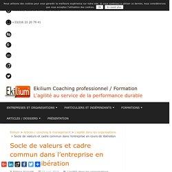 Socle de valeurs et cadre commun dans l'entreprise en cours de libération