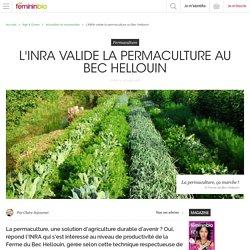 L'INRA valide la permaculture au Bec Hellouin