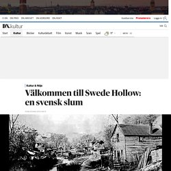 Välkommen till Swede Hollow: en svensk slum