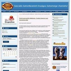 Alulról szerveződő vállalkozás - Creative Selector nevű innovációs oldal