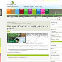 FRANCE AGRIMER 03/07/15 Biomasse - Valorisation des déchets verts en France