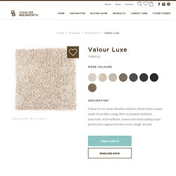 Valour Luxe Cut Pile 100% Solution Dyed Nylon Carpet