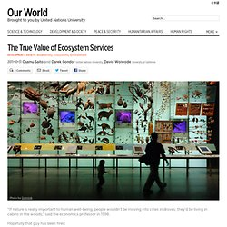 The true value of ecosystem services - OurWorld 2.0