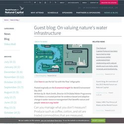 Guest blog: On valuing nature's water infrastructure
