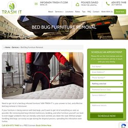 Bed Bug Furniture Removal