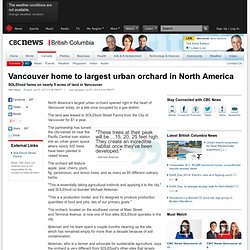 Vancouver home to largest urban orchard in North America - British Columbia