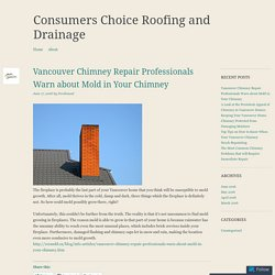 Vancouver Chimney Repair Professionals Warn about Mold in Your Chimney