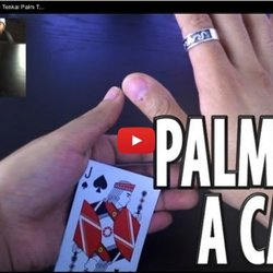 Vanishing and Producing a Card -- Tenkai Palm Tutorial