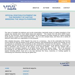 Vaquita Captive Breeding Statement