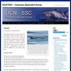 IUCN SSC – Cetacean Specialist Group