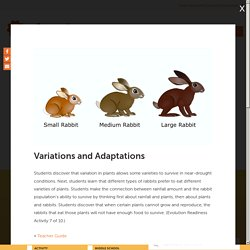 Variations and Adaptations
