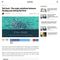Fish feed - The major variations between floating and sinking fish feed - Lezeto: Lifestyle, Entertainment, Fashion, Tech, Women