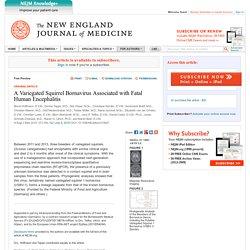 NEJM 09/07/15 A Variegated Squirrel Bornavirus Associated with Fatal Human Encephalitis
