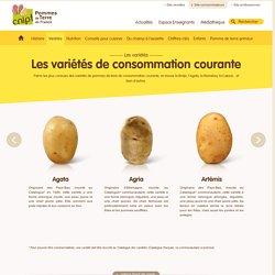 Variétés de pommes de terre de consommation courante > C.N.I.P.T.