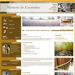 Variétés d'osier, osiériculture, culture de l'osier, coupe et écorçage de l'osier vivant