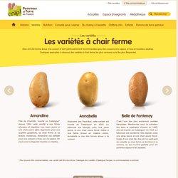 Variétés de pommes de terre à chair ferme > C.N.I.P.T.