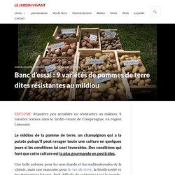 Banc d'essai : 9 variétés de pommes de terre dites résistantes au mildiou - L...