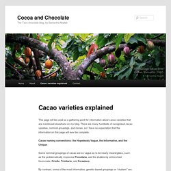 Cacao varieties explained