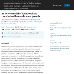 An in vivo model of functional and vascularized human brain organoids