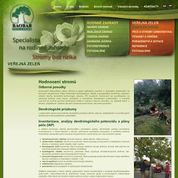 VEŘEJNÁ ZELEŇ - Hodnocení stromů