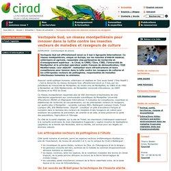 CIRAD 03/05/18 Vectopole Sud, un réseau montpelliérain pour innover dans la lutte contre les insectes vecteurs de maladies et ravageurs de culture