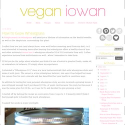Vegan Iowan: How to Grow Wheatgrass