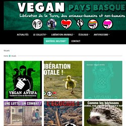 Vegan Pays Basque
