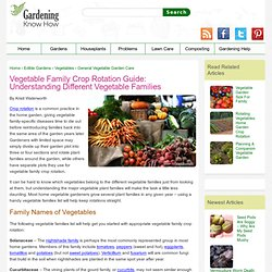 Vegetable Plant Families – Using Family Names Of Vegetables For Rotating Crops