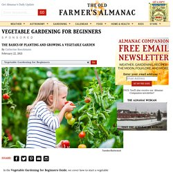 Vegetable Gardening for Beginners: The Basics of Planting & Growing