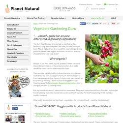 Vegetable Gardening Guru - How to Grow Vegetables