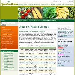 Garden planning garden pearltrees - Vegetable garden planting guide zone 6 ...