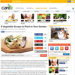 6 Vegetable Scraps to Plant in Your Garden